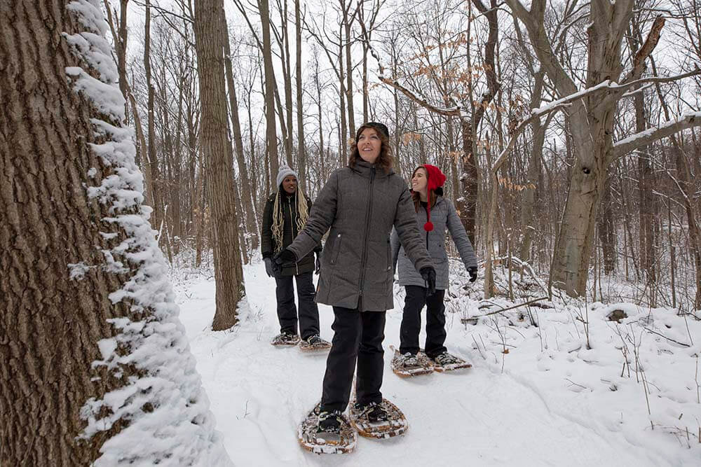 Snowshoeing in Southwest Michigan